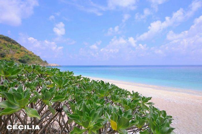 biển côn đảo đẹp tuyệt vời