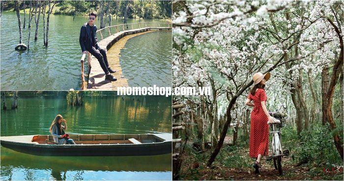 Secret Garden thiên đường so deep cực đẹp tại Đà Lạt