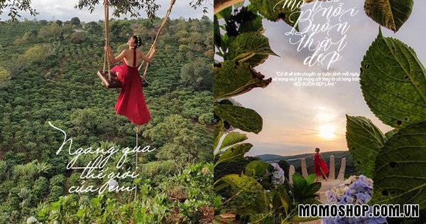 Dalaland – 'Tiểu Bali thu nhỏ' trong lòng Đà Lạt, điểm check-in đẹp