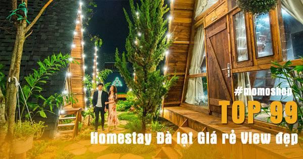 【 Update 4h Trước】TOP 99+ Homestay Đà lạt – Giá rẻ – View đẹp