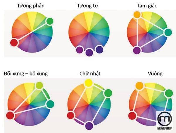 Cách phối đồ Màu Quần Áo Nam theo bảng màu