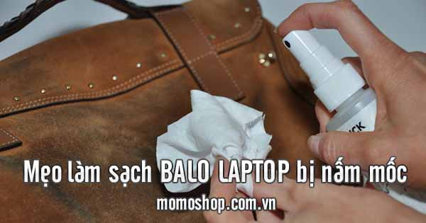Chia sẻ mẹo làm sạch balo laptop bị nấm mốc vào mùa mưa